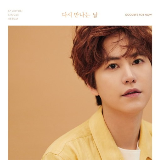 Kyuhyun Super Junior - Goodbye For Now