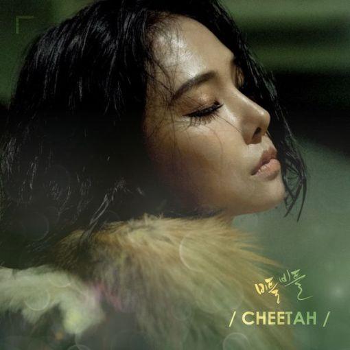 Cheetah - Stagger